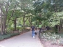 Central Park to NBC