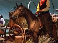 cowboy-44