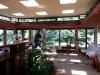 Frank Lloyd Wright House-112325.jpg