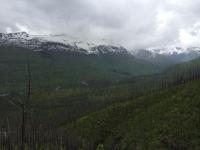 Glacier National Park-13.jpg