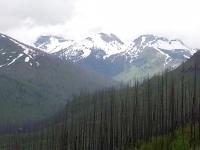 Glacier National Park-3.jpg