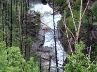 Glacier National Park-5.jpg