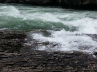 Glacier National Park-86.jpg