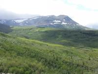 Glacier National Park Day 2-16.jpg