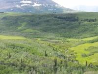 Glacier National Park Day 2-17.jpg
