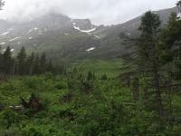 Glacier National Park Day 2-33.jpg