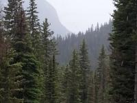 Glacier National Park Day 2-43.jpg