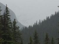Glacier National Park Day 2-47.jpg