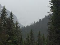 Glacier National Park Day 2-48.jpg