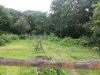 Living History Farm-115000.jpg