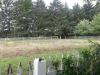 Living History Farm-120826.jpg