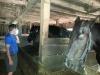 Living History Farm-121453.jpg
