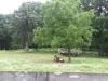 Living History Farm-121705.jpg
