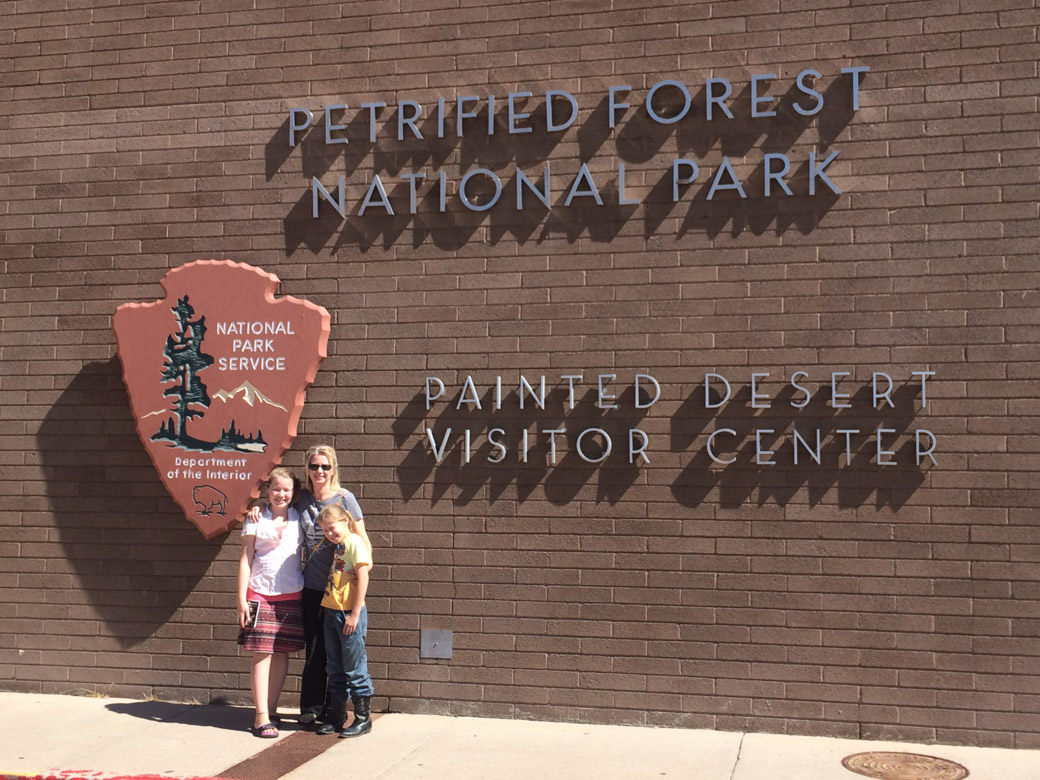 petrified-forest-1