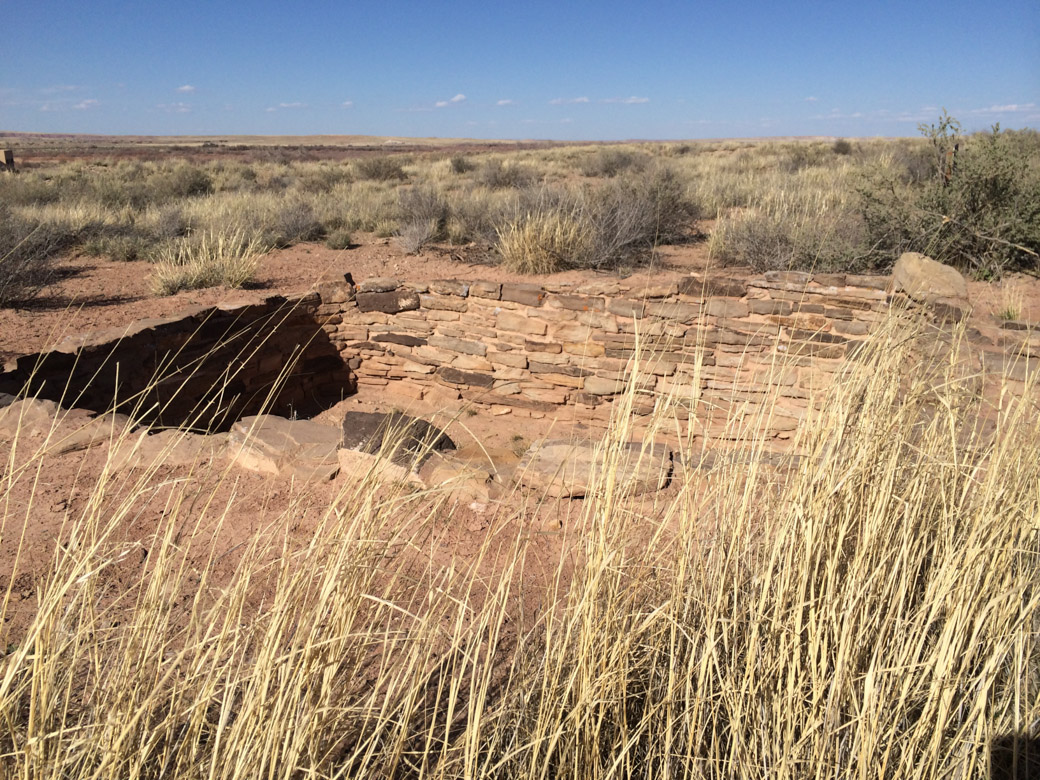 petrified-forest-13