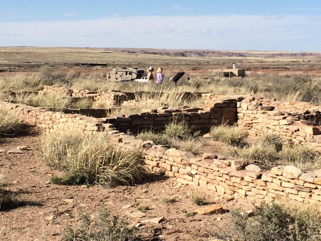 petrified-forest-24