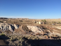 petrified-forest-62